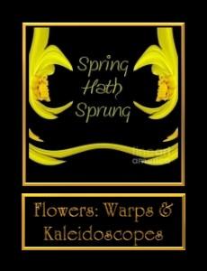 0-FlowerWarps