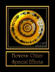 0-FlowersOtherS